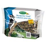 Scotts Woodpecker treat