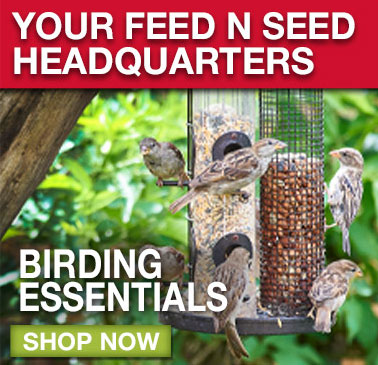 BIRDING ESSENTIALS: Shop now.